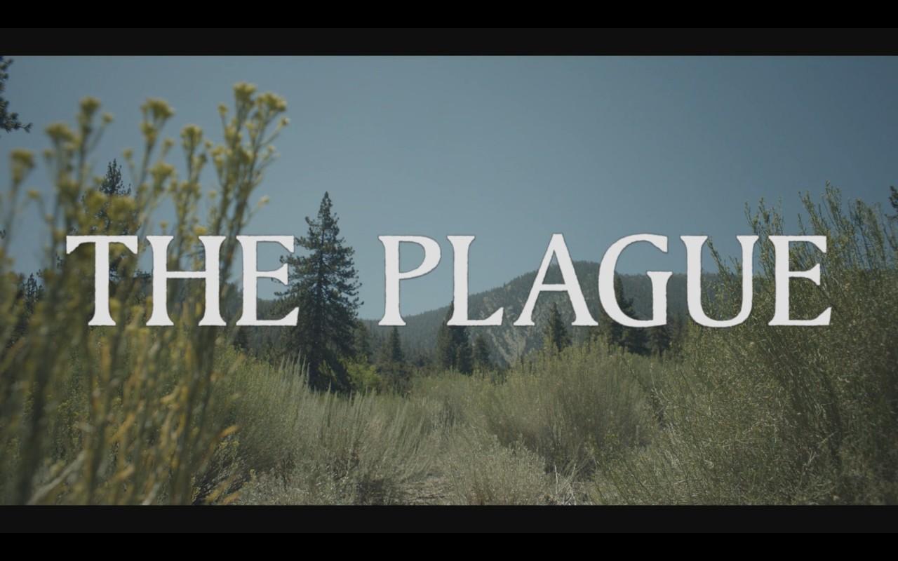 The plague - 6
