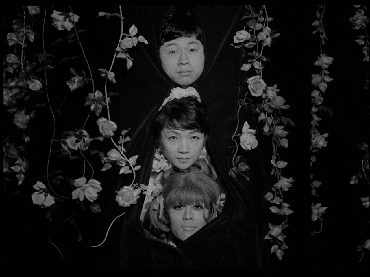 Funeral parade of roses - 7