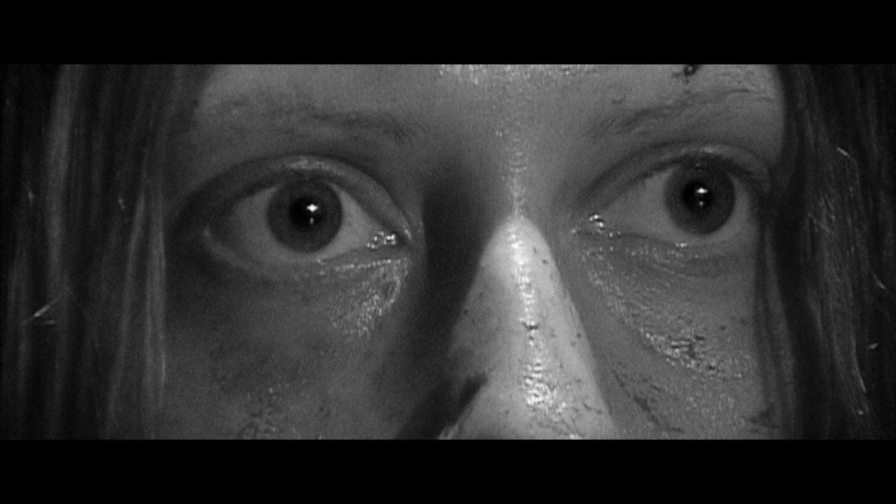 Wettlaufers widow - 2