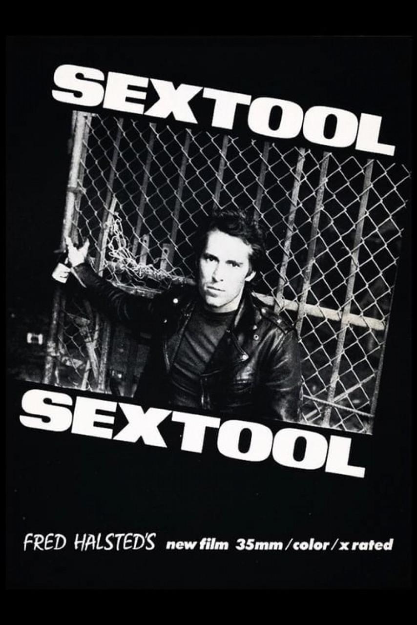 Poster Sextool