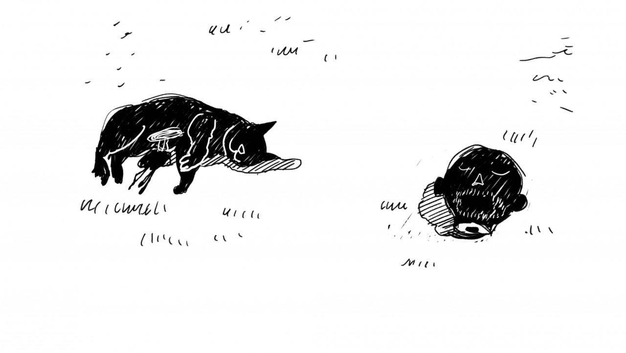 Poster Il Gatto