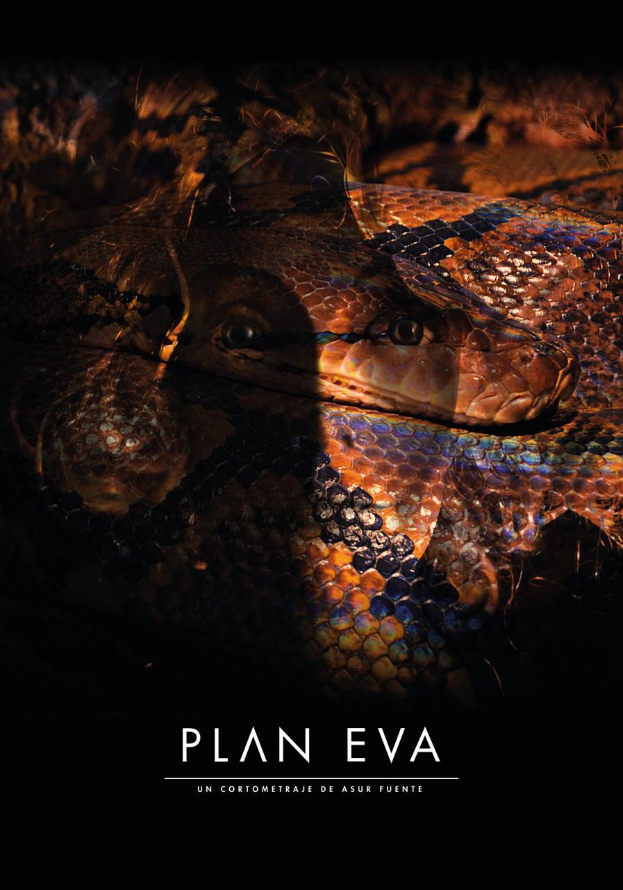 Plan Eva
